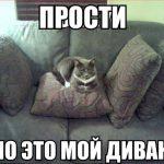 Расслабьтесь и получайте удовольствие (выбор дивана для зала)