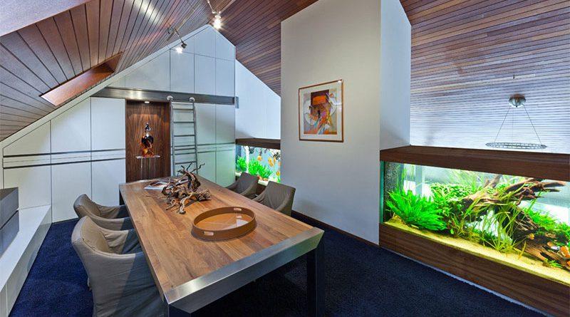 Как правильно подобрать аквариум для дома